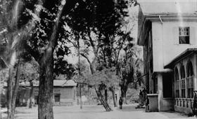 Arlington House Dependency