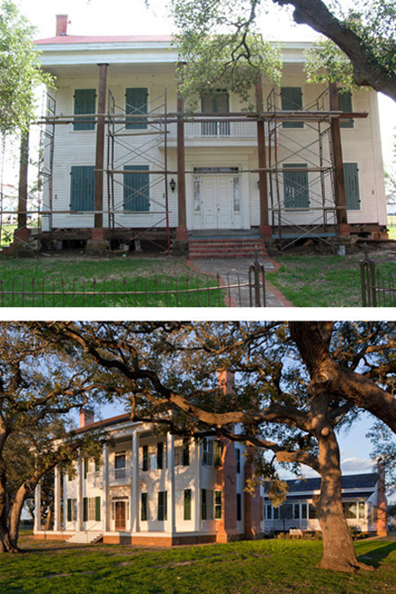 Ancient Oaks_Before and After